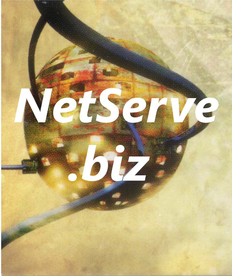 Website Design and Hosting donated by NetServe.biz, a NetServeOnSite Company